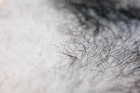 Mans hairs macro background fine art high quality prints products fifty megapixels