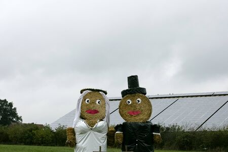 Just married puppets lovely background high quality prints
