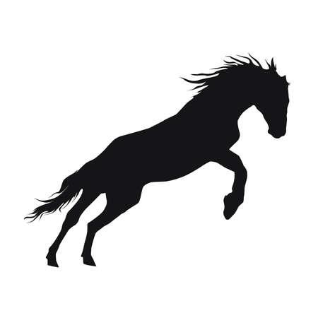 rearing horse fine vector silhouette - black over white.
