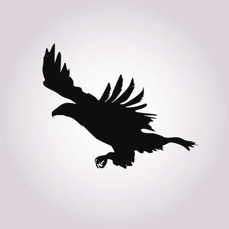 Silhouette of the eagle in flight with wings spread.Vector illustration Illustration
