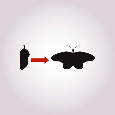 Transformation concept. Caterpillar, butterfly, and cocoon stages. Changes, personal growth icon. Symbol of metamorphoses