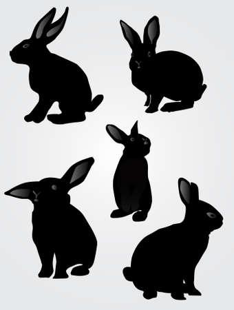 Rabbit silhouette, vector illustration  イラスト・ベクター素材