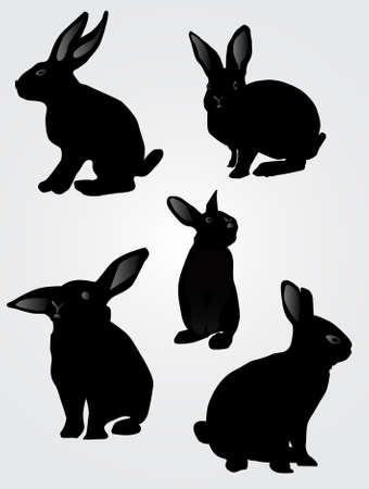 Rabbit silhouette, vector illustration Illustration