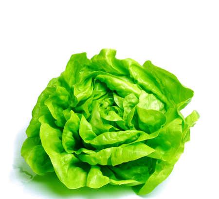 Fresh salad lettuce isolated on white