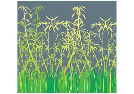 Bamboo, vector Stock Vector - 9414926