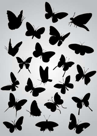 butterfly tattoo design: Butterfly silhouettes, vector
