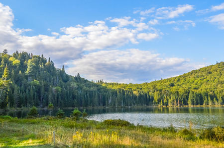 lac: Lac in Mont-Tremblant national park in sunshine, Quebec, Canada
