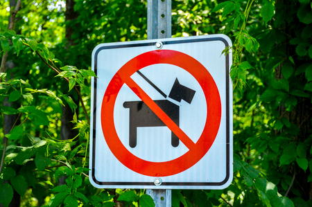 No dogs allowed in the forest, Montreal, Canada Banque d'images - 96621384