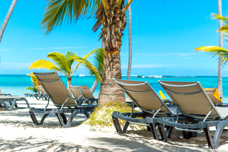 Sun chairs on the beach among palm trees in the resort of Punta Cana. Zdjęcie Seryjne