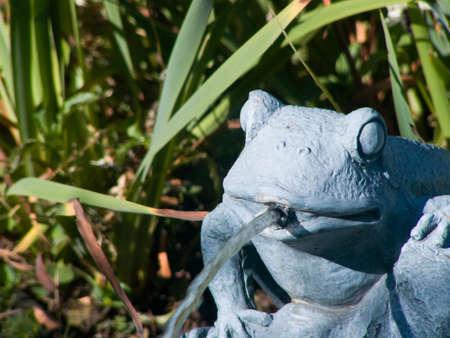 spewing: Frog spewing water
