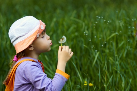 little girl blowing a dandelion on a background of green grass