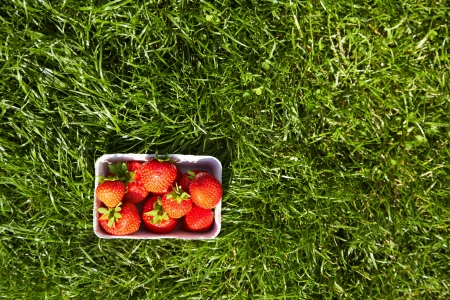 aardbeien in een doos op het groene gras bovenaanzicht Stockfoto