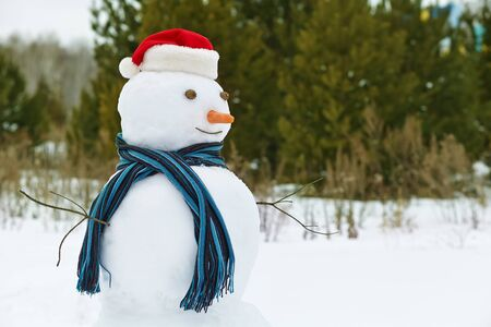 snowman: funny snowman in a forest. snowman in santa hat outdoors