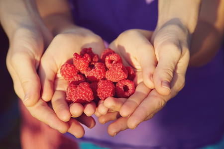 handful of raspberry in the hands a woman and child