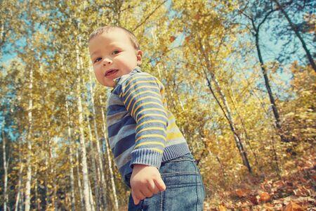 outdoor portrait of baby in an autumn park. walking little boy.