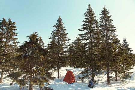 touristic tent in winter firry forest in ski tour Stockfoto
