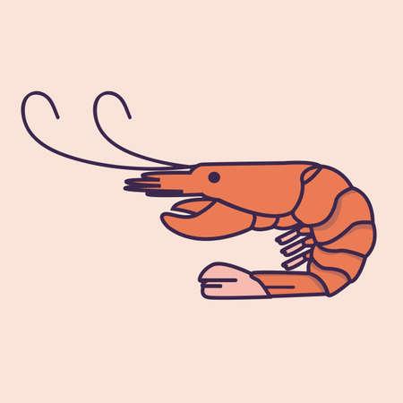 shrimp prawn illustration drawing icon flat line icon vector