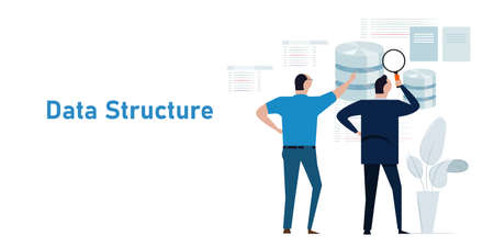 data structure database analyst looking into schema information