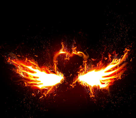 heart and wings: Fiery wings