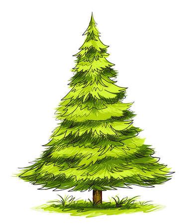 Ilustración de árbol  Ilustración de vector