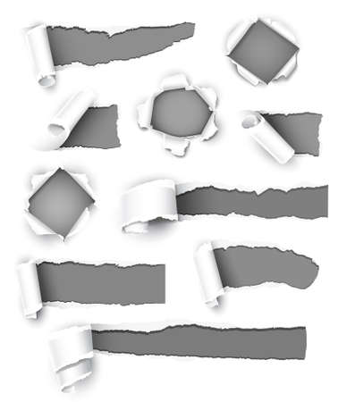 torned: Collection of gray paper. Vector illustration