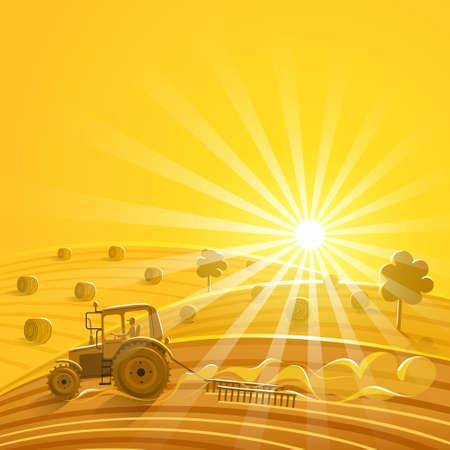 yellow tractor: La recolecci�n en el fondo soleado