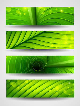 Collection of banners texture of green leaf Vector