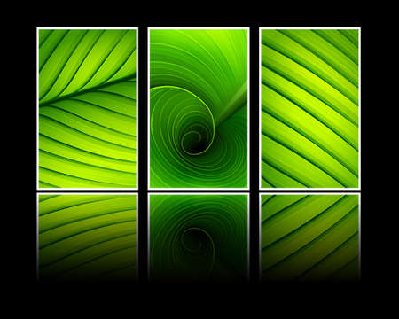 Collection of banners texture of green leaf Stock Vector - 15052332