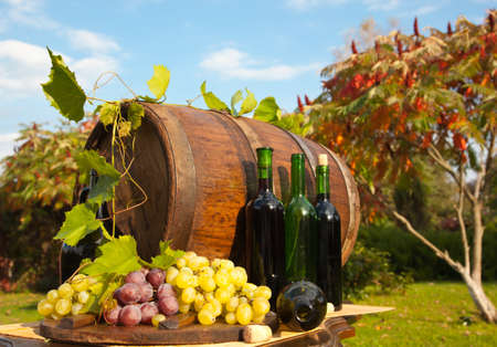 wine colour: Still Life with Grapes Stock Photo