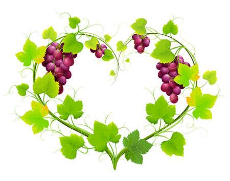 Raisins avec des feuilles en forme de coeur. Vecteur Vecteurs
