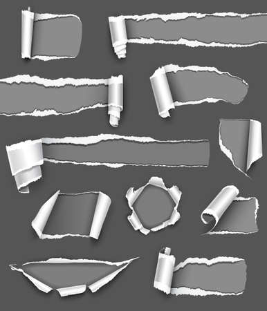 ripped paper: Collection of gray paper illustration Illustration