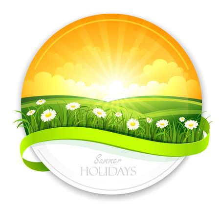 sun flower: Summer banner. Vector
