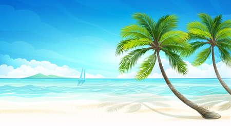playa: Playa Tropical.