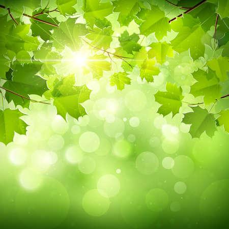 Natürlichen grünen Hintergrund Illustration