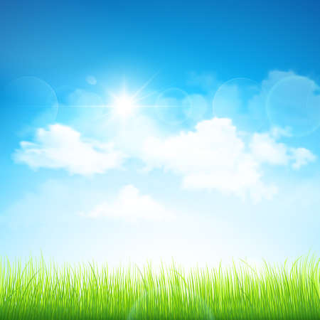 Natural background with green grass and blue sky with clouds  Vector Vector
