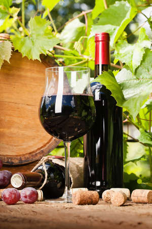 wine barrel: Glass of red wine, bottle and barrel on the background of grape leaves