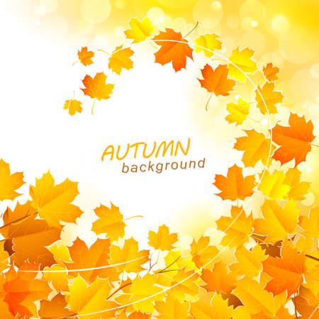 Autumn leaf fall background