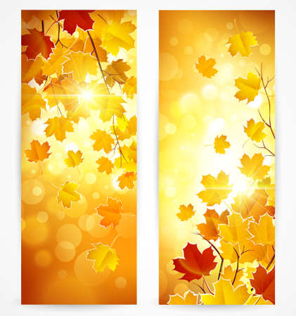sun set: Collection of autumn banners