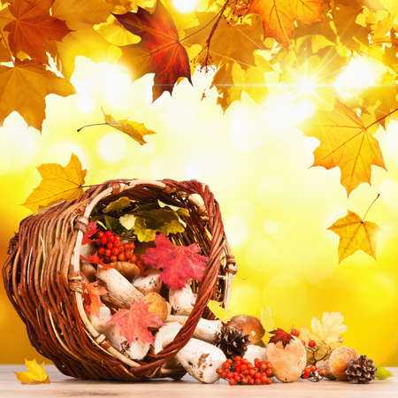 Basket with mushrooms on a background of yellow autumn leaves photo