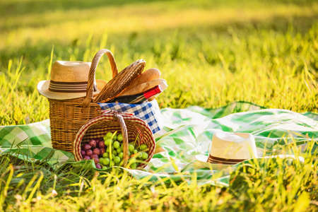 basket: Picnic with wine and grapes in nature