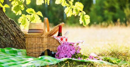 赤、白ワイン ・ オーク付近のピクニック