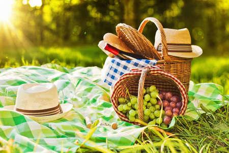 ワインとブドウの自然の中でピクニック 写真素材
