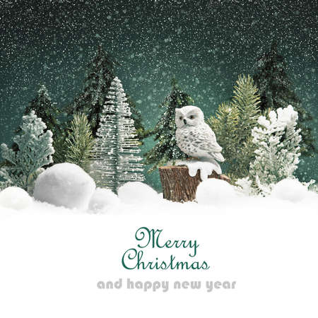 Winter forest landscape with owl and snow. Christmas background