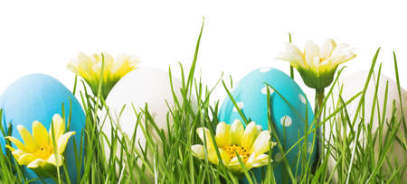 flower border: Easter eggs and green grass with flowers isolated on white
