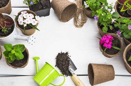 Tuingereedschap en bloemen op witte houten achtergrond