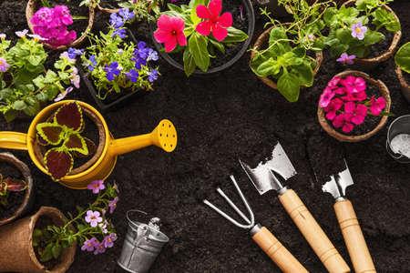 Attrezzi da giardinaggio, annaffiatoio, semi, fiori e Giardino del suolo sfondo Archivio Fotografico - 63946632