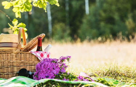 Picnic with red and white wine near oak