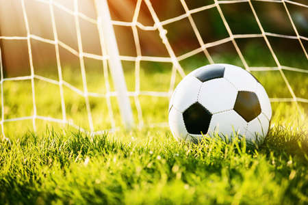 Soccer ball on green grass in sunlight Stock Photo
