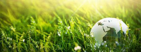 Globo di vetro nell'erba. Concetto di pianeta verde per l'ambiente