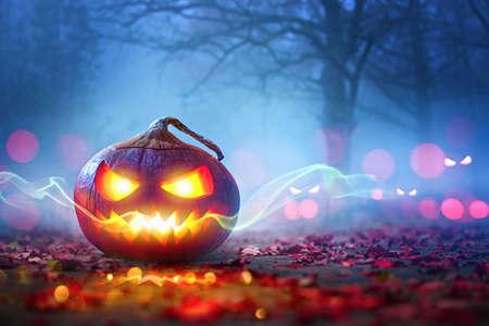 Halloween Pumpkins Glowing In Fantasy Night Forest . Jack OLantern Holiday Horror Background